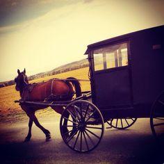Taken by Rachel Herring on our ride in Kutztown, PA