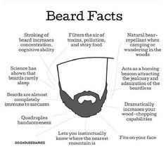Funny pictures about True Beard Facts. Oh, and cool pics about True Beard Facts. Also, True Beard Facts photos. Gentleman Stil, Gentleman Fashion, Fitness Lady, Man In Love, My Love, Just In Case, Just For You, Look Man, Beard Love