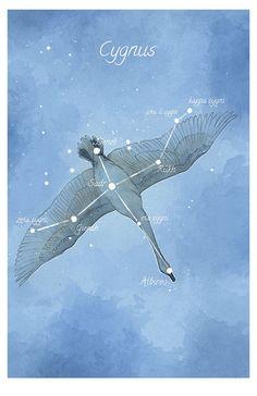 Astronomy art Cygnus constellation by LaPetiteMascarade on Etsy,