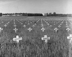 The German cemetery for those killed in Bastogne as seen in 1951