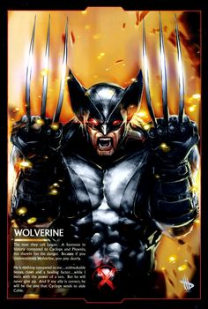 Wolverine - X-Men Days of Future Past Marvel Wolverine, Hq Marvel, Logan Wolverine, Marvel Comics Art, Marvel Heroes, Wolverine Metal, Wolverine Cosplay, Marvel Facts, Avengers Comics