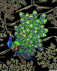 Royal Peacock - Posing in the Garden - Black/Gold fabric