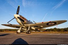 Supermarine 349 Spitfire LF5B aircraft picture Ww2 Fighter Planes, Ww2 Planes, Fighter Pilot, Fighter Aircraft, Fighter Jets, Ww2 Aircraft, Military Aircraft, Spitfire Airplane, The Spitfires