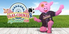 """Nothing Beats The Fair For Family Entertainment The Clay County Fair announced their 2018 Fair schedule and this year is CRAZY withGoat Yoga,Russell Dickerson,Stump Water Band,Chris Janson,Dailey & Vincent,Micah Tyler,Jeremy Camp, HighValley,,Grandpa's Cough Medicine andChase Riceheadlining this years entertainment. Every fair in the state of Florida must follow certain guidelines from the state. In 2003 The Clay County Agricultural Fair was awarded the """"Champion County Fair"""" in…"""