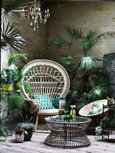 This peacock chair in its element, with a green cushion and tropical plants to enhance the urban jungle effect Polly Wreford Photography Interior Tropical, Tropical Decor, Botanical Interior, Tropical Furniture, Botanical Decor, Tropical Garden, Tropical Plants, Botanical Bedroom, Lush Garden