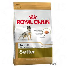 Animalerie  Royal Canin Breed Setter Adult pour chien  12 kg