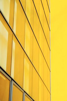Building yellow