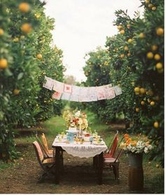 gorgeous party in an apple orchard--  reminds me of GARDEN SPELLS by sarah addison allen