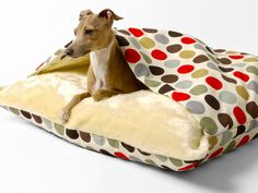 snuggle beds in cotton | dog beds, dog and italian greyhound