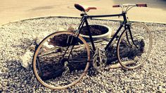 Sascha D. Retro, Photography, Road Bike, Photograph, Fotografie, Mid Century, Fotografia, Photoshoot