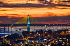 See the beauty of Manaus, Brazil on a Sightseeing Tour. http://www.vacationsmadeeasy.com/