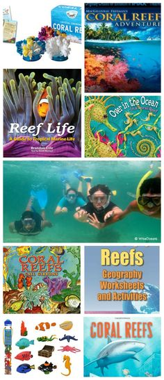 Coral Reefs Lessons for Kids- games, apps, lessons, books. Everything to teach kids about this ocean biome. Activities For Autistic Children, Science Activities For Kids, Teaching Activities, Science Lessons, Lessons For Kids, Stem Activities, Teaching Kids, Science Experiments, Kid Science