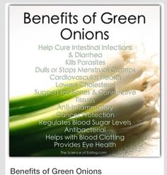 Many countries are confirming the outstanding health benefits of allium vegetabl. - New Ideas Fruit Benefits, Health Benefits, Health And Nutrition, Health And Wellness, Health Facts, Gut Health, Regulate Blood Sugar, Healthy Tips, Healthy Foods