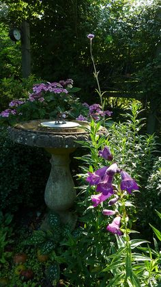 Gardens:  An English Country #Garden, by jump for joy2010, via Flickr.