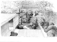 "Credit: Tom Stuart-Smith A sketch of a garden full of what Tom Stuart-Smith describes as ""an outlandish carpet of gigantic ferns""."