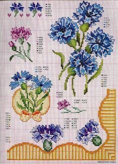 Gallery.ru / Фото #1 - Ботаника-цветы - irislena