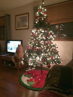 I love how Morris is admiring the tree :)