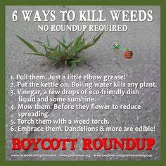 Please don't use RoundUp….