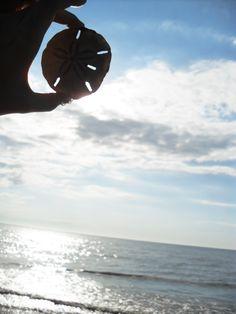 Beach Life <3
