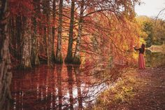 Photography Pics, Autumn Photography, Amazing Photography, Autumn Fall, Pagan, Fairytale, Travel Photos, Cool Photos, Landscapes
