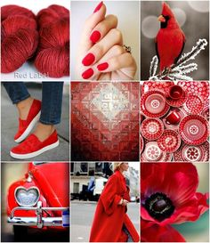 Mood Board Monday - Poppy by Tanis Fiber Arts Colour Schemes, Color Trends, Color Combinations, Tanis Fiber Arts, Color Collage, Yarn Colors, Shades Of Red, Coral, Red Turquoise