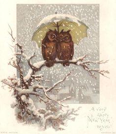 vintage Happy New Year postcard owls
