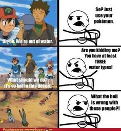 They're so smart. Pokemon's best moments.