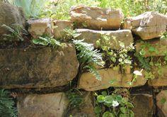 Garden 35 in Atwater Village