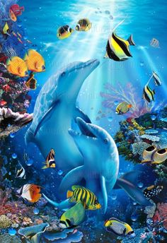 Enjoy curated Just for Fun and Sharing! Kiss in the Sea - Christian Riese Lassen - Artist Sea Life Art, Sea Art, Fantasy Kunst, Fantasy Art, Photo Dauphin, Sea Murals, Dolphin Art, Underwater Painting, Beautiful Sea Creatures