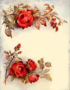 """Apenas cuatro rosas, pero.. cuatro rosas que me """"regaló"""" mi amiga Maria José, a veces, las imágenes me llegan así, a través de mis amigas......"""