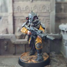 Guilder Mercenary 1