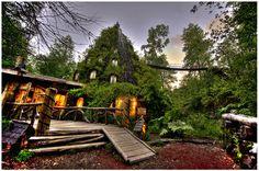 Hotel Baobab in Huilo Huilo, Chile