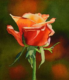 Rose ORIGINAL watercolor painting floral painting by Esperoart