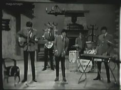 It's My Life - The Animals (Columbia) No. 7 (Jan '66) https://en.wikipedia.org/wiki/It's_My_Life_%28The_Animals_song%29