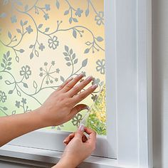 Decorative Window Film- A perfect solution for me!! Many styles to choose from (search JoAnn's, Amazon too) from stained glass to simple and elegant frosted looks. This site (www.improvementscatalog.com) has a lot of smart, unique, and practical home solutions. Love it!