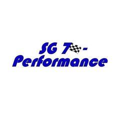 SG 7 – Performance