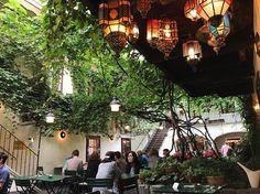 1000things.at präsentiert euch eine Übersicht über die schönsten Heurigen der Innenstadt, die mit idyllischen Gastgärten auf euch warten. Vienna Waits For You, Austria, Sweet Home, House Styles, Travel, Beautiful, Frankfurt, Roads, Wanderlust