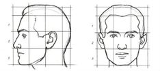 Discover the Internets Amazing Online Drawing Lessons Resource for all your drawing tutorial needs. Step by step instructions on drawing. Head Proportions, Facial Proportions, Realistic Drawings, My Drawings, Human Face Drawing, Drawing Faces, Face Anatomy, Human Head, Human Body