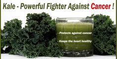 Kale – Powerful Fighter Against Cancer !