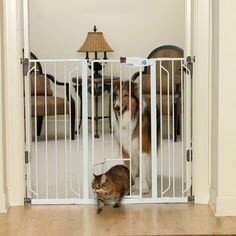 Carlson Pet Products-Extra Tall Walk-thru Pet Gate With Pet Door- White In Extra Tall Pet Gate, Cat Gate, Pet Door, Baby Gates, Small Doors, Large Animals, Dog Houses, House Dog, Bird Houses