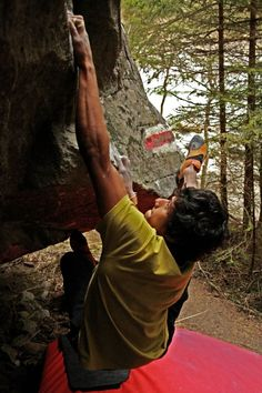 indian climber at magic wood