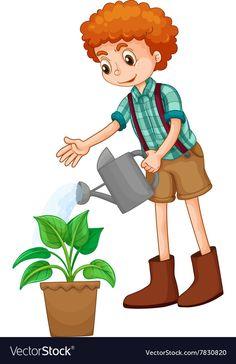 Boy watering the plant Royalty Free Vector Image , Art Drawings For Kids, Colorful Drawings, Save Water Poster Drawing, Animal Pictures For Kids, Primary Songs, Hedgehog Craft, School Frame, Kids Background, School Painting