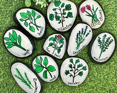 Herb Garden Stones, Herbs and Spices Story Stones, Gardening Stones, Painted Rocks, Story Rocks, Garden Markers, Herb markers