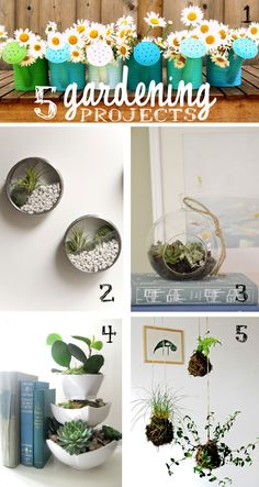 5 GARDENING PROJECTS