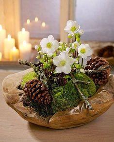 Hellebore- Christrose Christmas rose … Christmas rose More - Christmas Flowers, Christmas Wreaths, Christmas Crafts, Christmas Decorations, Table Decorations, Holiday Decor, Diy Decoration, Christmas Christmas, Centerpieces