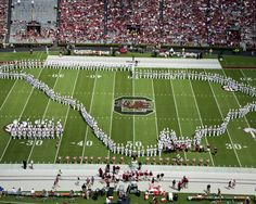 The South Carolina Marching Band Performs in Williams-Brice Stadium Picture at South Carolina Gamecock Photos