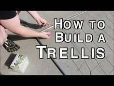 How to Build A Metal Conduit Garden Trellis for Vertical Growing & Hand Made Nylon Netting - You Diy Trellis, Garden Trellis, Herb Garden, Trellis Ideas, Garden Fun, Edible Garden, Garden Ideas, Organic Gardening, Gardening Tips