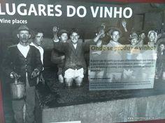 Visitar o Museu do Vinho - São João da Pesqueira, o que ver em São João da…