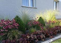 Landscape Design Plans, Landscape Edging, Landscape Art, Landscape Paintings, House Landscape, Landscape Photography, Small Front Gardens, Garden Care, Front Yard Landscaping