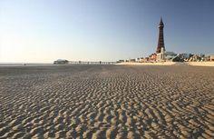 Blackpool x